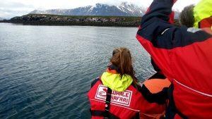 RIB boat tours 02