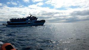 RIB boat tours 07