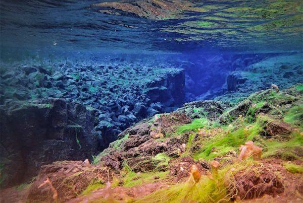 Underwater adventure: snorkeling in Silfra