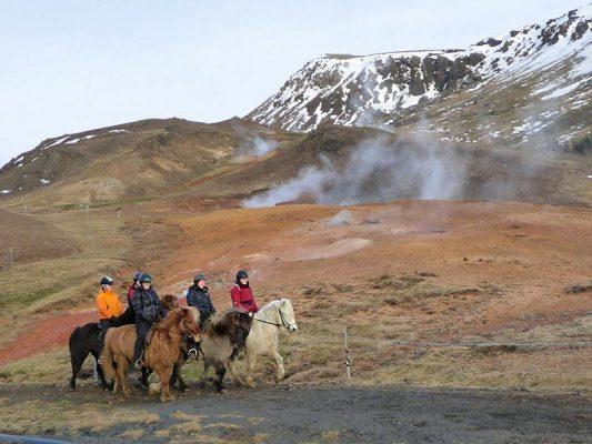 horses-hot-spring-04