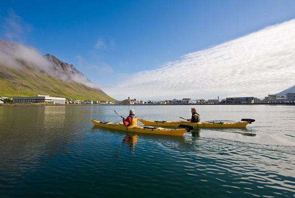 Calm water kayaking from Ísafjordur