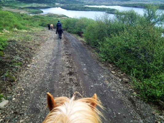 trail-rides-03