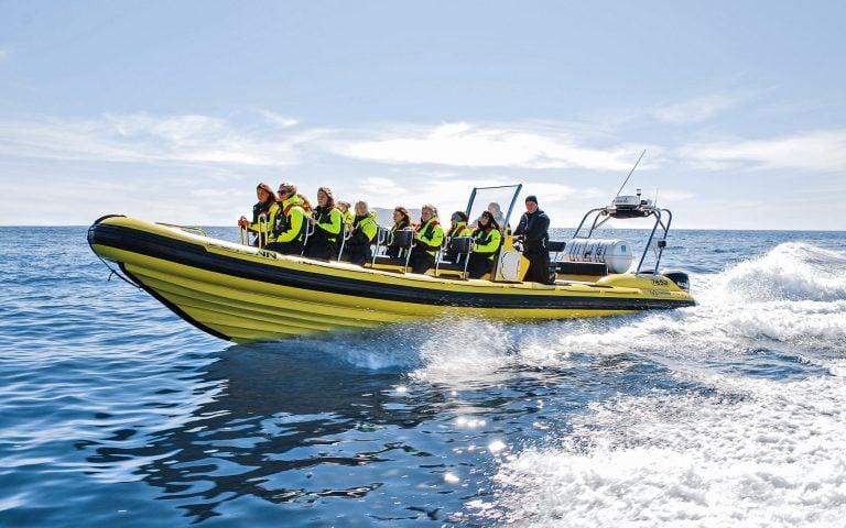 Black Beach RIB Boat Safari