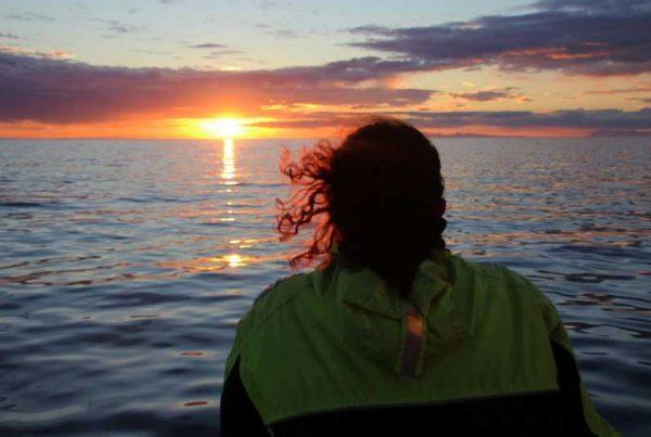 midnight-sun-whale-watching-tour-01