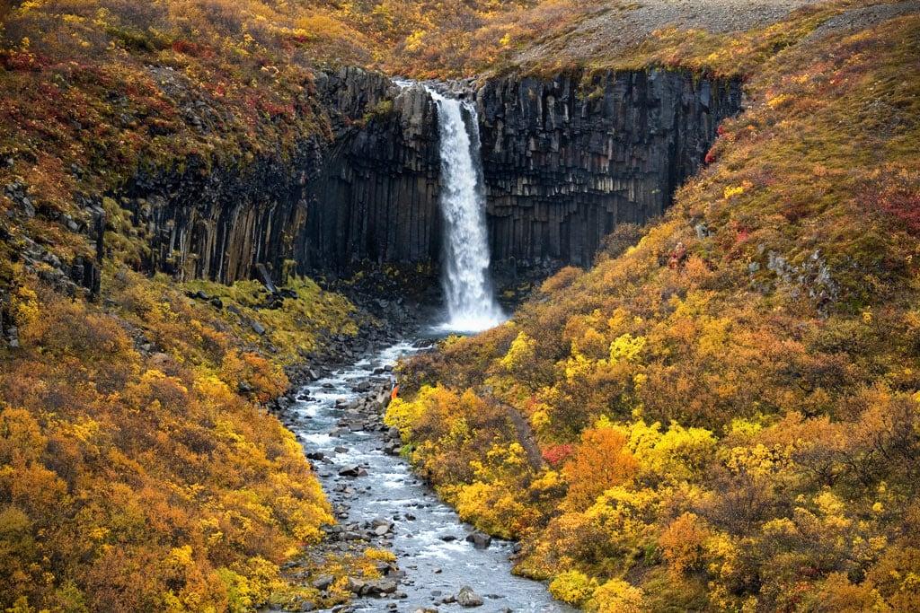 Svartifoss waterfall in Skaftafell in autumn