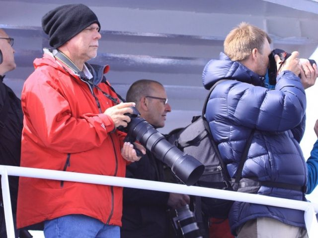 akureyri-classic-whale-watching-03
