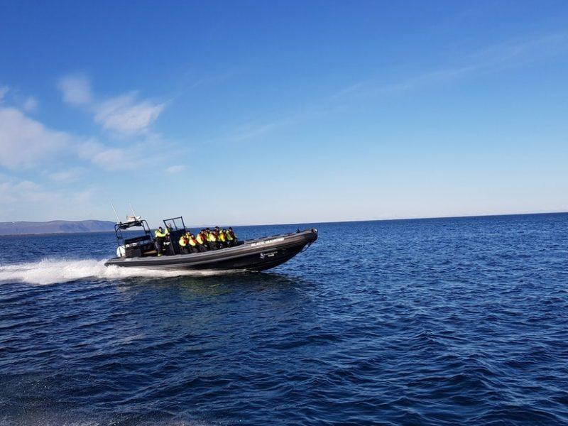 black-beach-rib-boat-safari-01