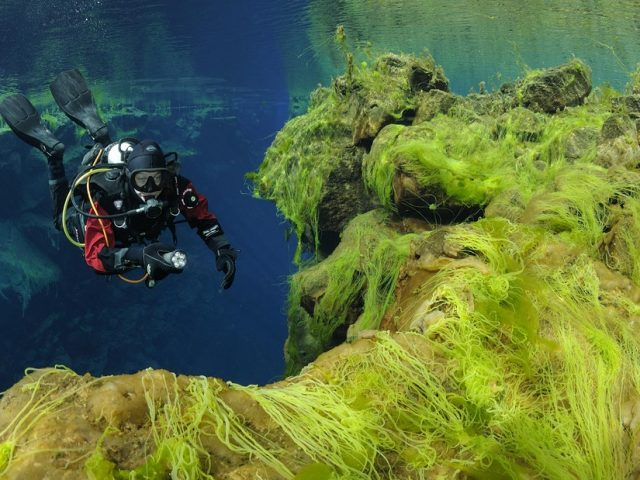 diving-silfra-03