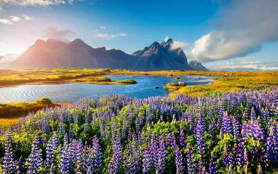 iceland-travel-packages-stokksnes