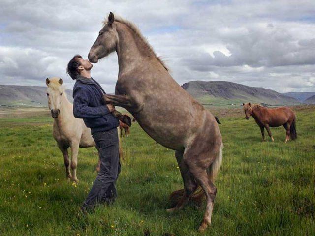 into-the-wild-horse-riding-tour-03