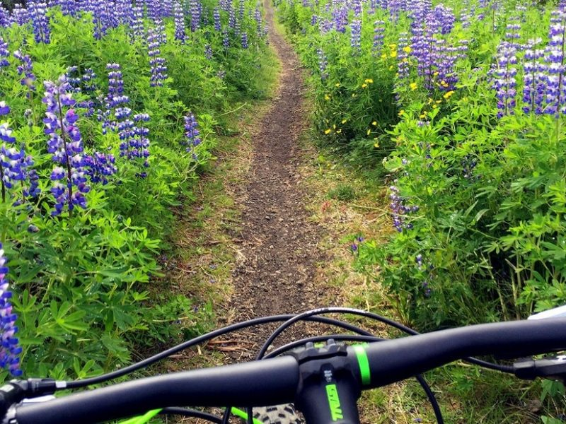 lava-trails-biking-03