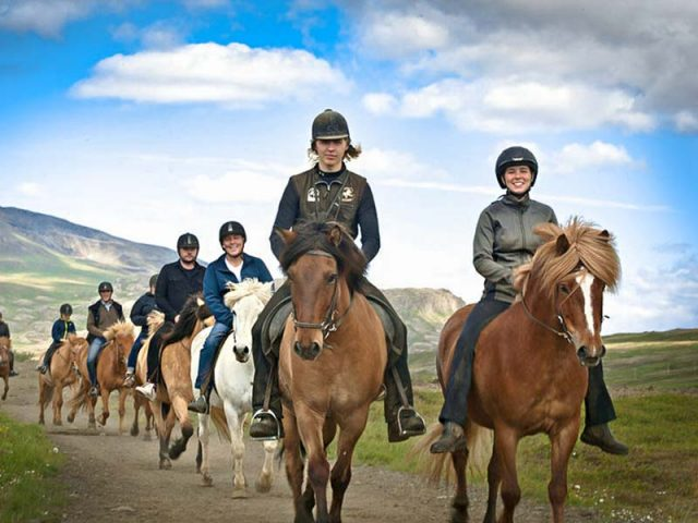 Laxnes special Horse riding tour in Iceland