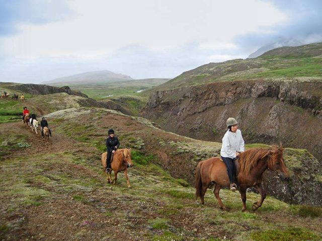 Exploring the Icelandic nature from a horseback