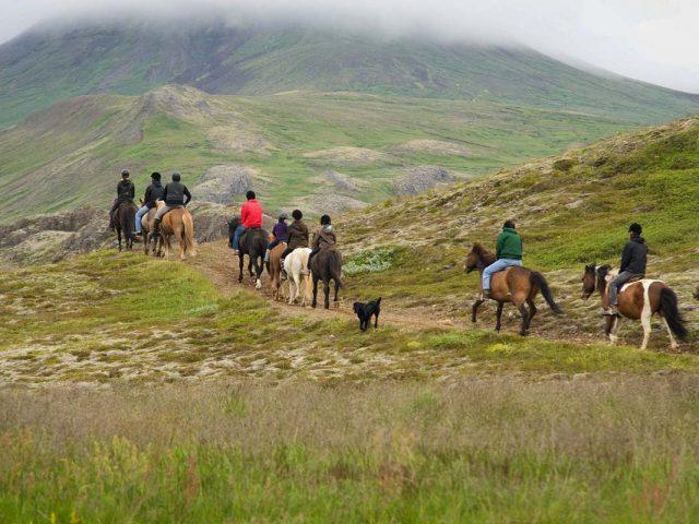 laxnes-special-horse-riding-tour-cover