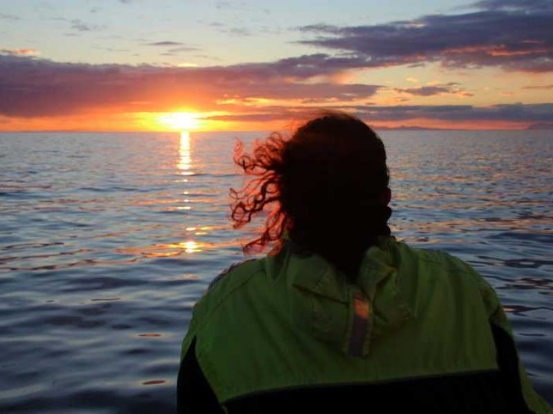 midnight-sun-whale-watching-tour-01