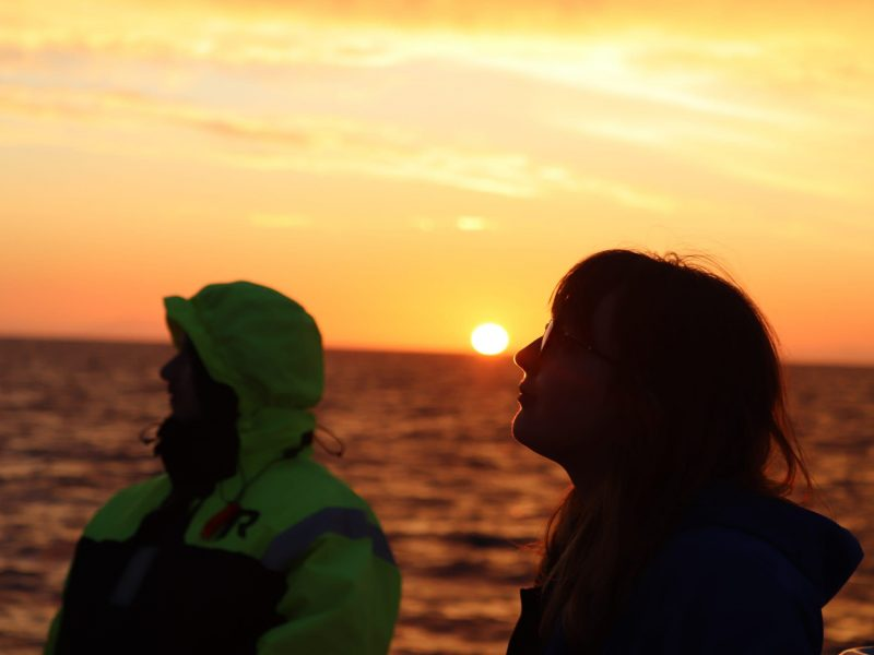 midnight-sun-whale-watching-tour-05