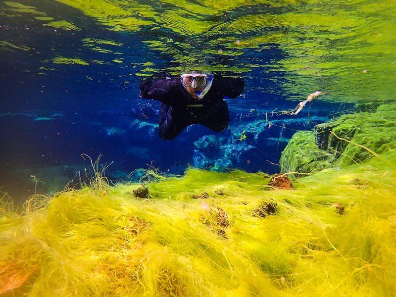 Snorkeling in Silfra fissure