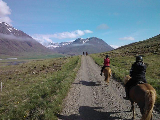 trail-rides-01